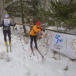 Skirogaining v Krušných horách
